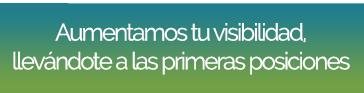 Posicionamiento en buscadores SEO en Madrid
