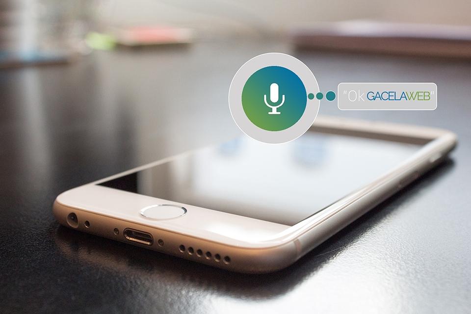 Voice Search y Posicionamiento SEO