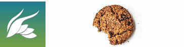Adaptación Nueva Ley Cookies 2021