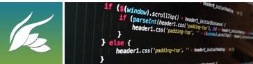 desarrollo imagen web