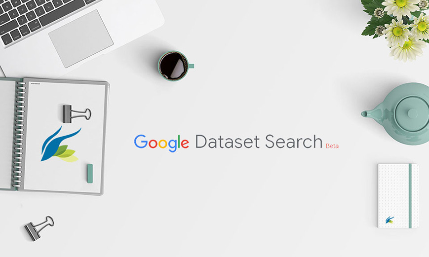 herramienta data search